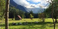 Bicycling in Austria and Slovenia with ExperiencePlus!