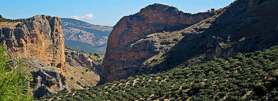 Another lovely view bicycling in Andalucia with ExperiencePlus! Bicyle Tours